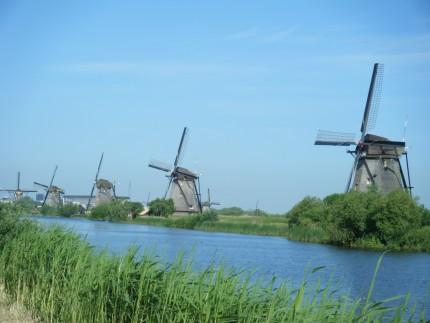 Dutch17