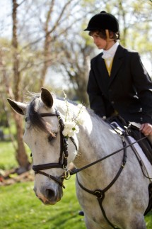 Wedding Horse 215x323 - Photo from Eric Graf Photography.