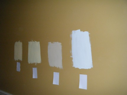 DSCF1518 430x323 - Paint Colors for Our New Place