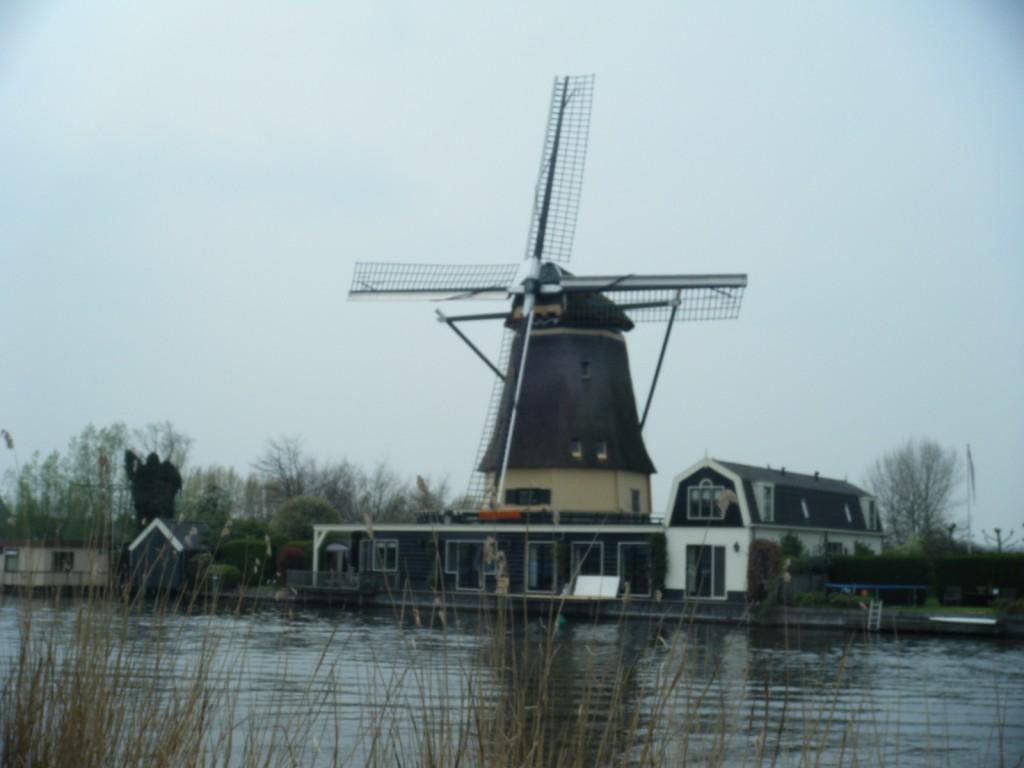 DSCF1802 1024x768 - Dutch Delights