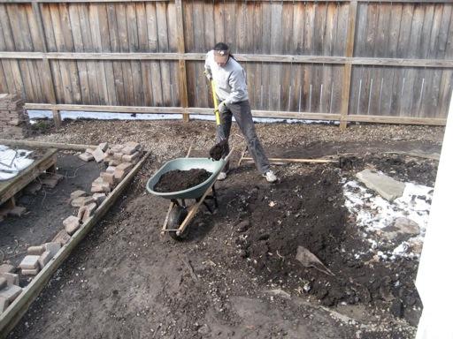 yard digging dirt