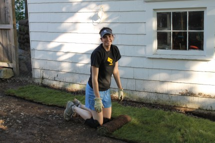 Backyard me putting down sod 430x286 - It's Not Easy Being Green