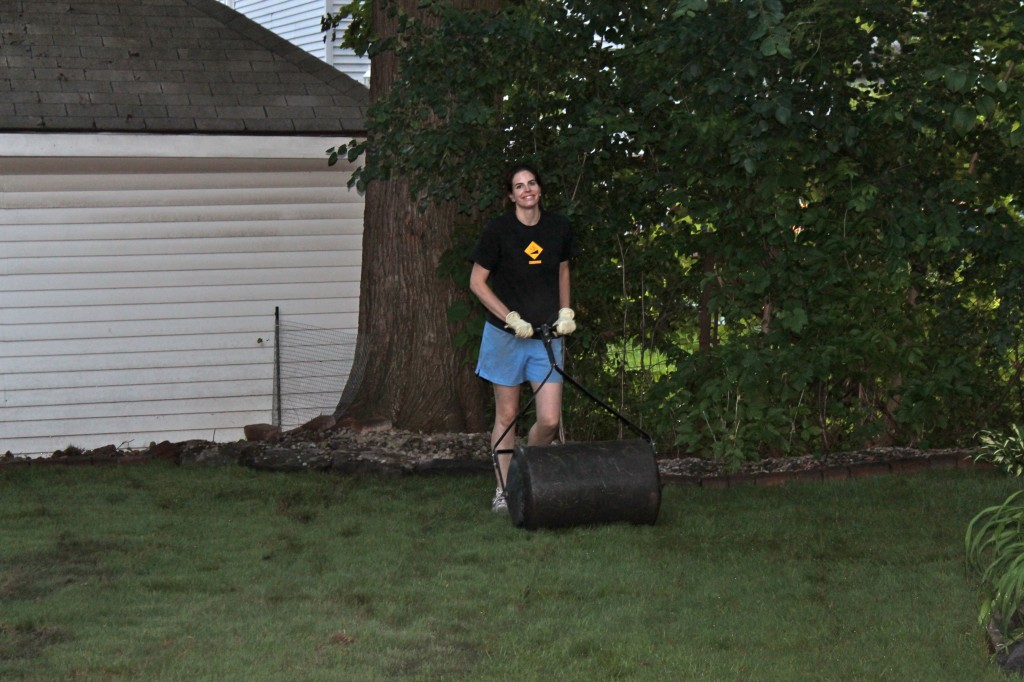 Backyard rolling 1024x682 - It's Not Easy Being Green