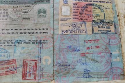 IMG 0470 430x286 - Passport Art