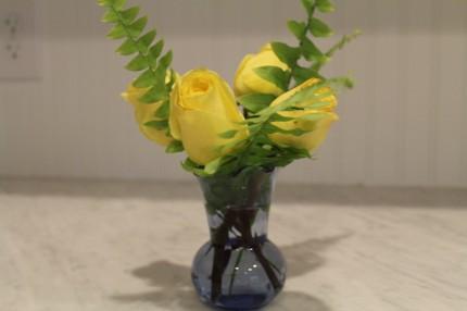 IMG 0632 430x286 - Rose Revival