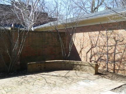 DSCF1538 430x323 - Courtyard Reveal