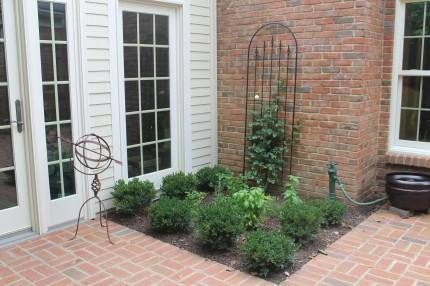 IMG 0741 430x286 - Courtyard Reveal