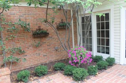 IMG 0746 430x286 - Courtyard Reveal