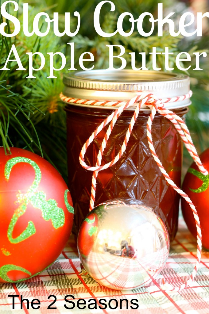 Slow Cooker Apple Butter
