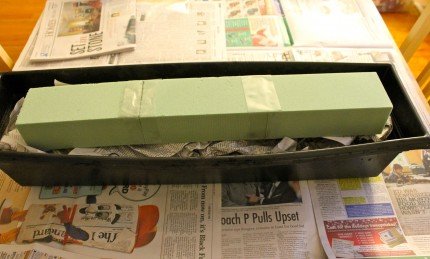 Boxes start 430x259 - Holiday Window boxes