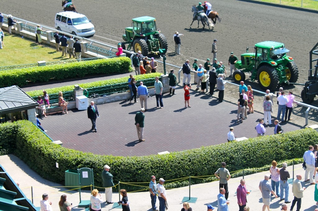 IMG 2202 1024x681 - A Day at the Races