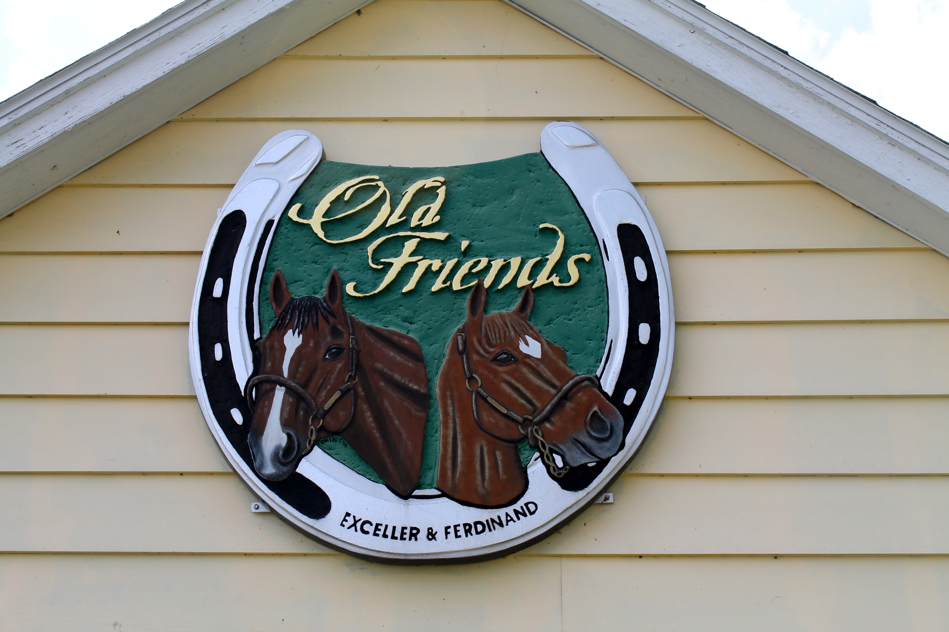 IMG 2551 - Old Folks' Home for Horses