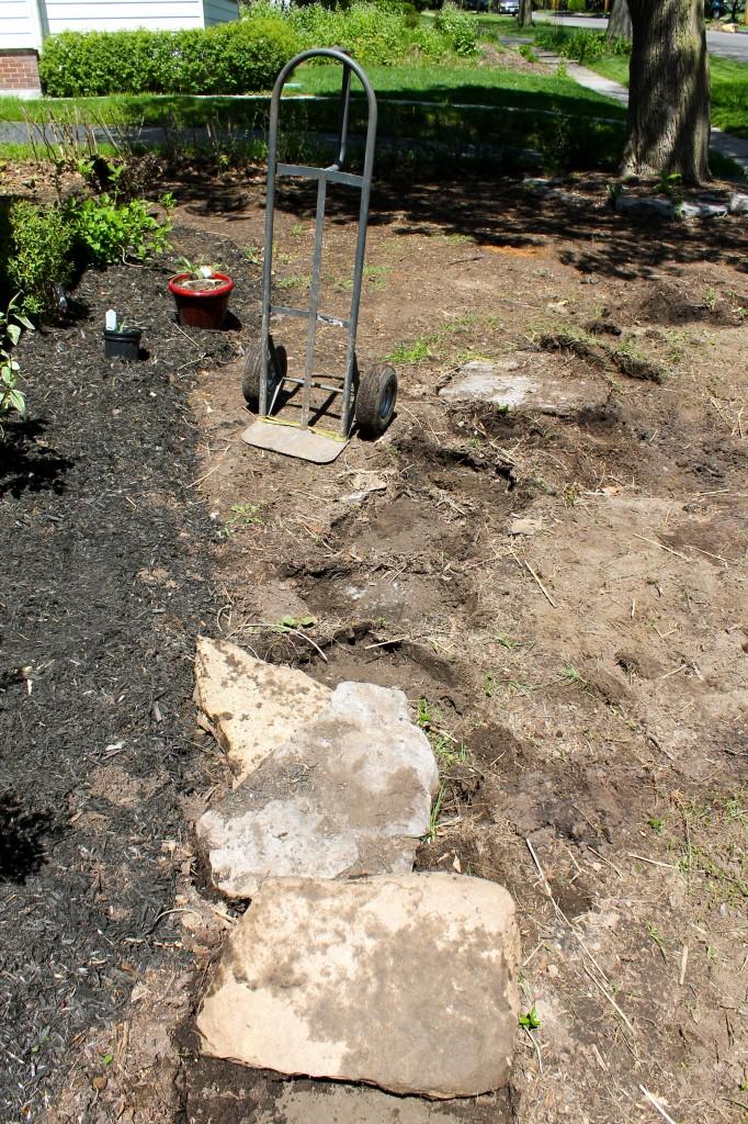 Yard removing rocks 682x1024 - Our Front Yard Progress