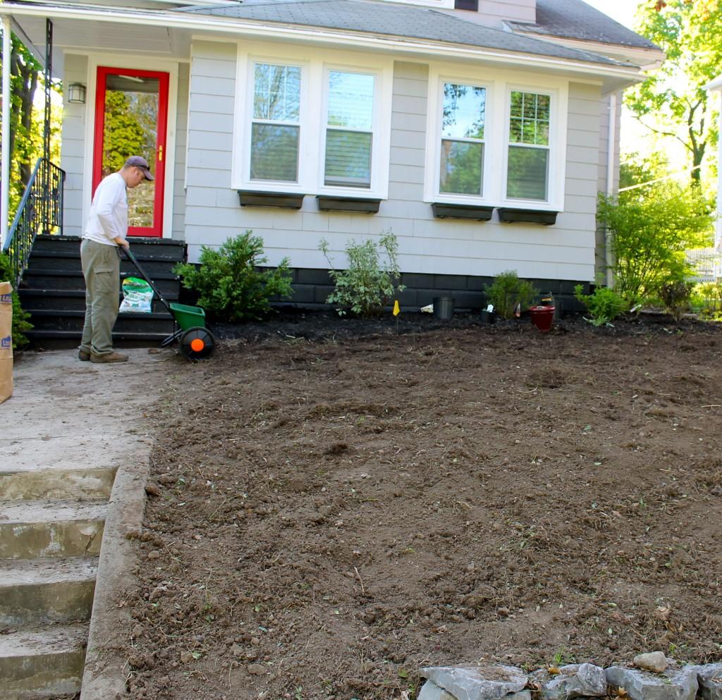 Yard seeding 1024x993 - Our Front Yard Progress