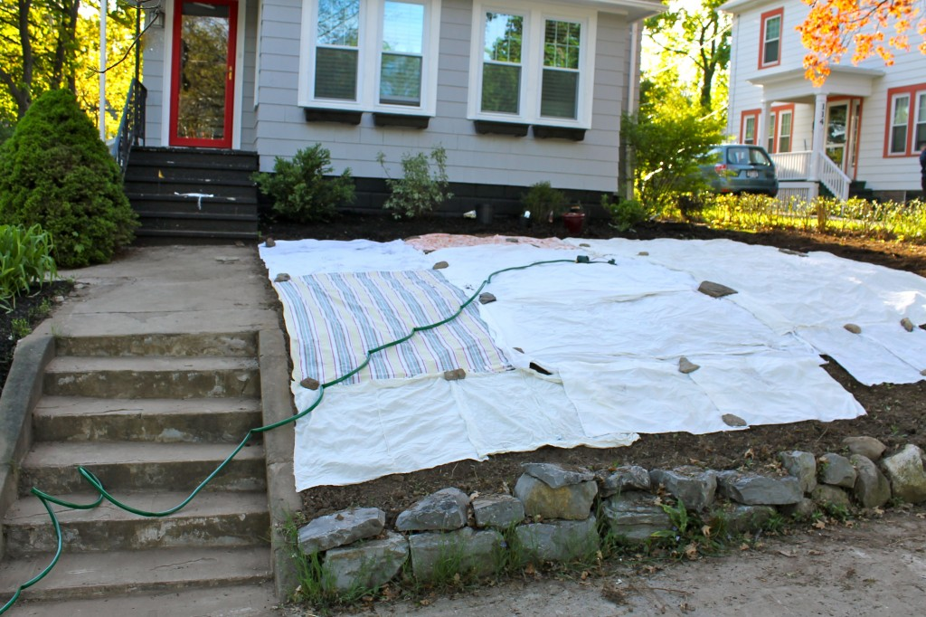 Yard sheets 1024x682 - Our Front Yard Progress