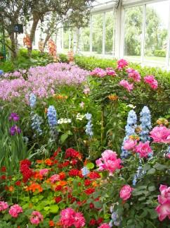 Garden 1 242x323 - Monet's Garden