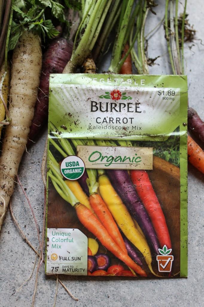 Garden carrots type 682x1024 - Garden Update