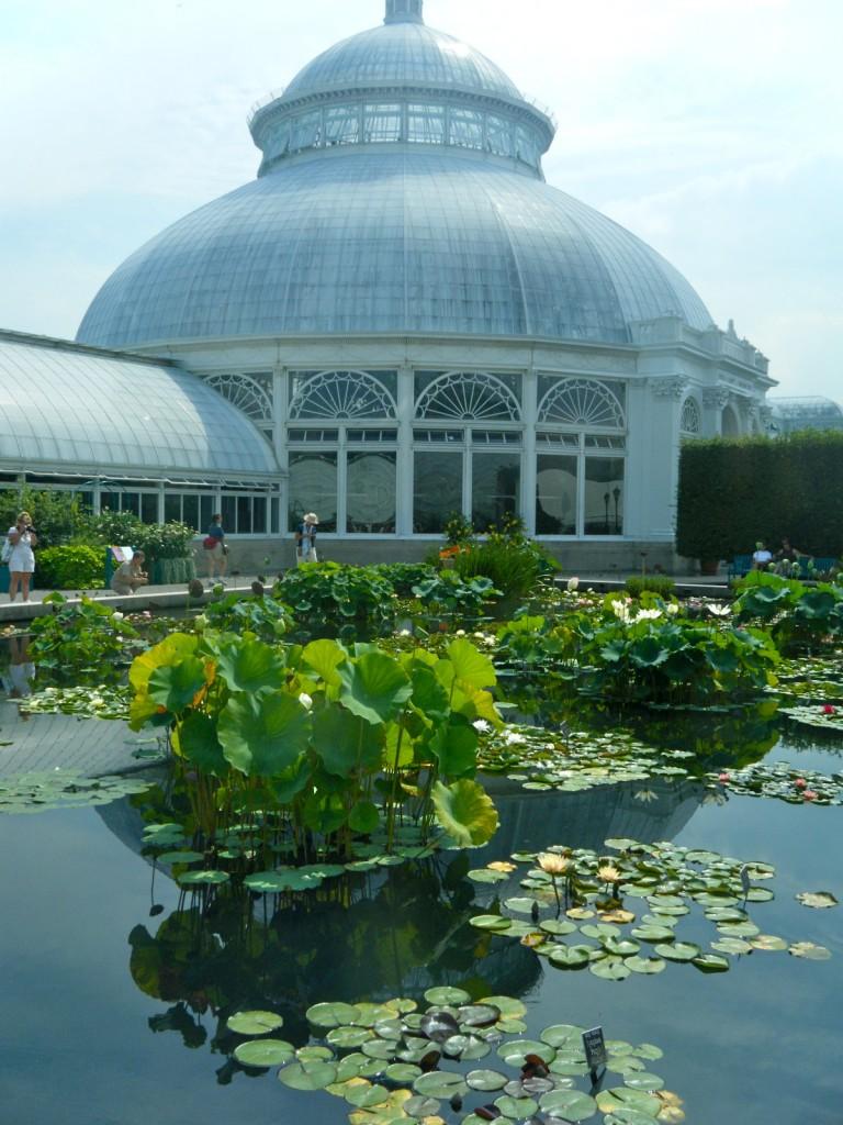DSCF3495 768x1024 - Monet's Lily Pond, NYC Style
