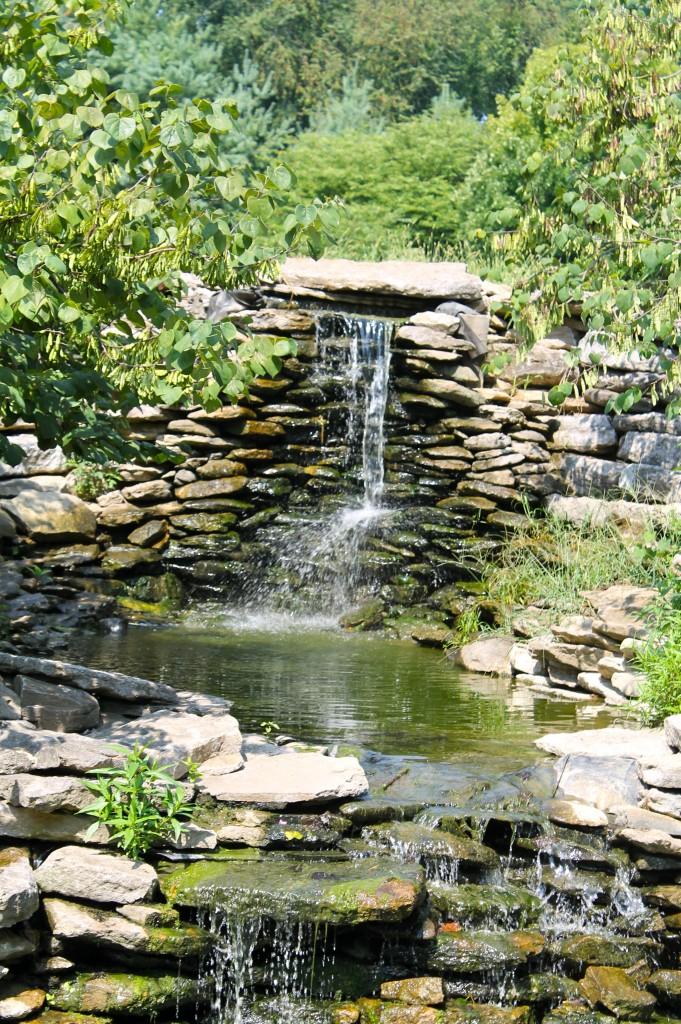 IMG 2905 681x1024 - Visiting a Japanese Garden