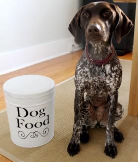 Tin Gracie 277x323 - DIY Dog Food Container