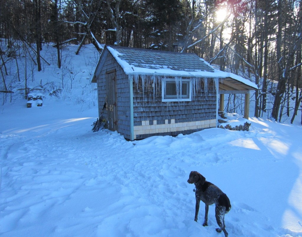 Vermont cabin outside 1024x802 - Our Cabin in the Woods Plus a  Give-Away