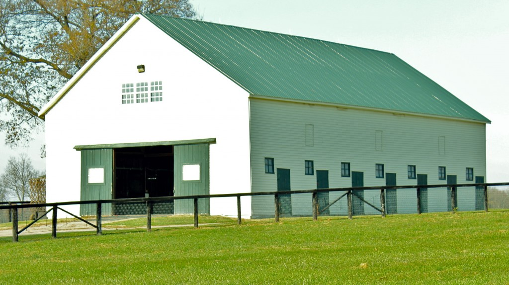 IMG 3779 1024x573 - Funny Farm Barn