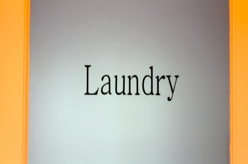 IMG 5345 1024x681 - My Adorable Laundry Door