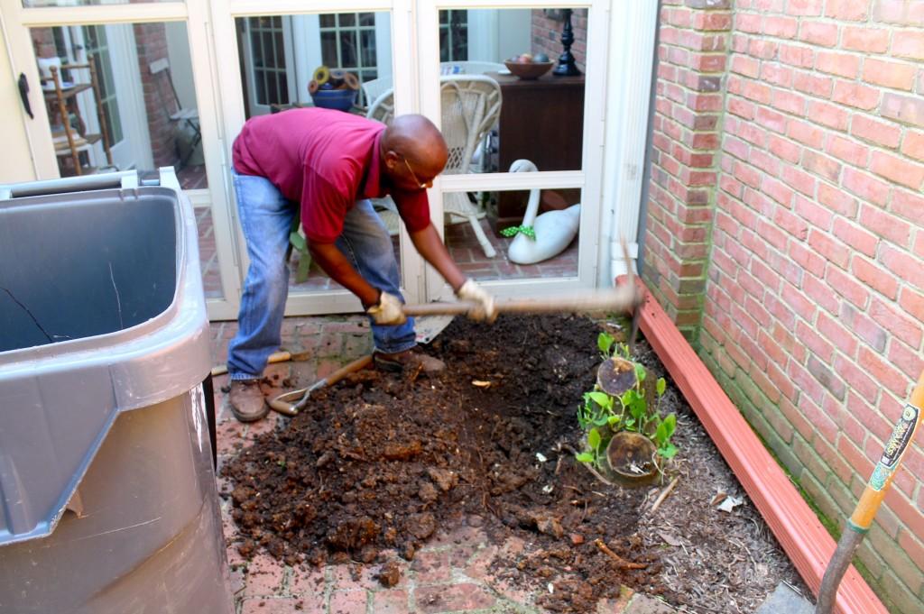 IMG 59121 1024x681 - More Courtyard Improvements