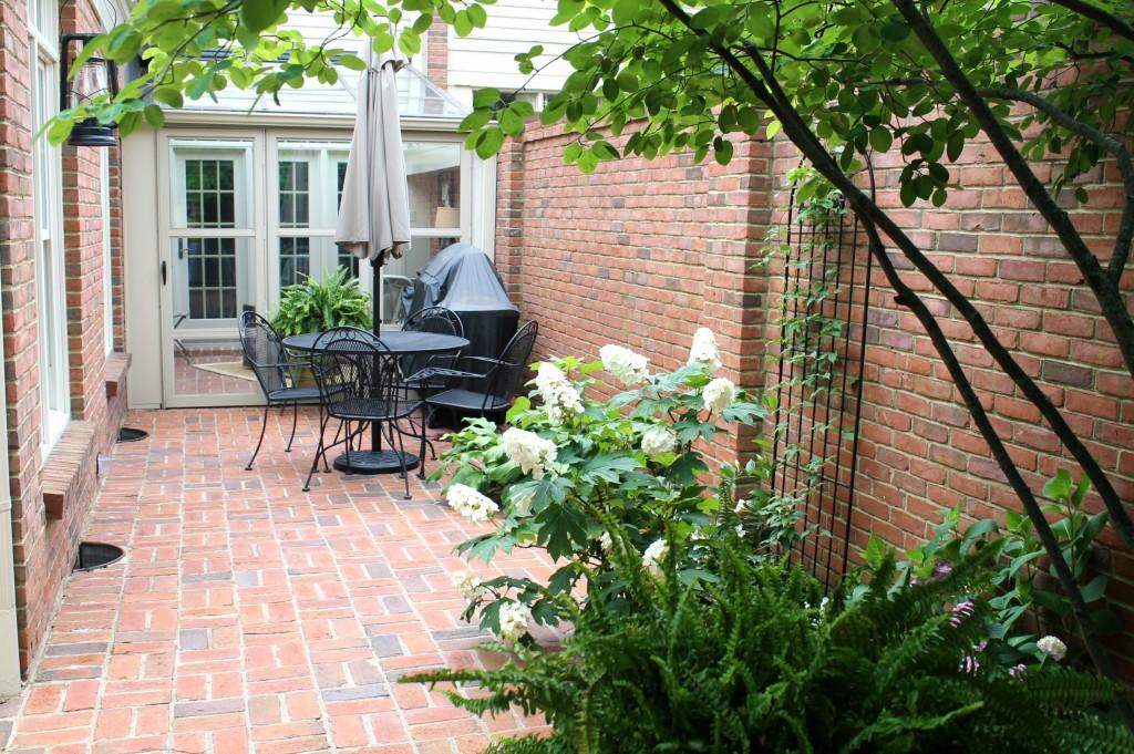 IMG 5997 1024x681 - More Courtyard Improvements