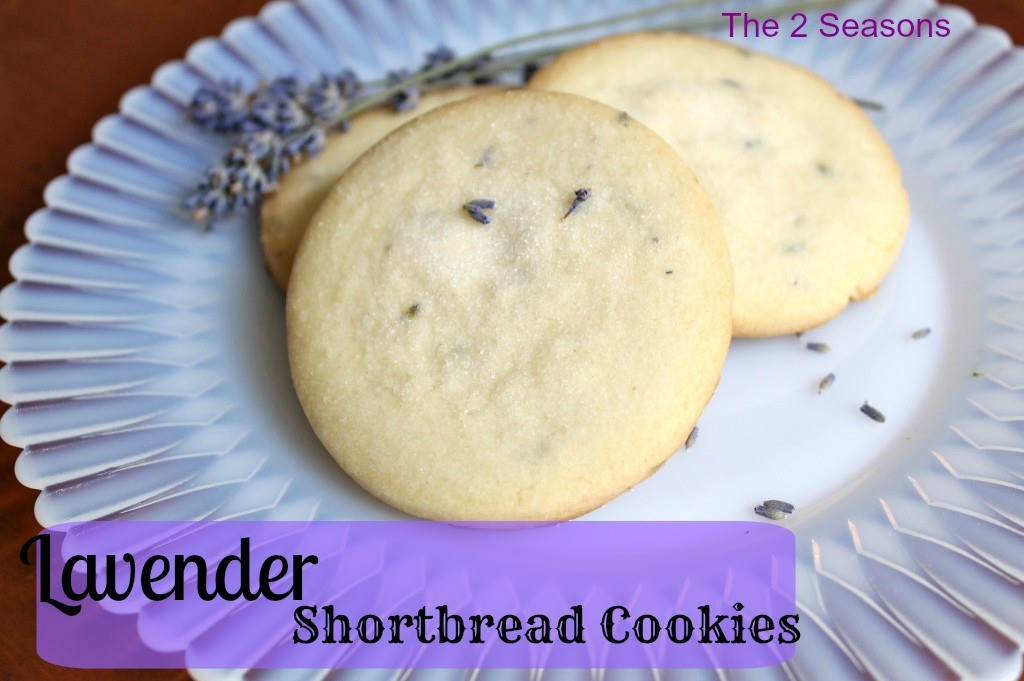 Lavender Shortbread Cookies 1024x681 - Lavender Shortbread Cookies Recipe