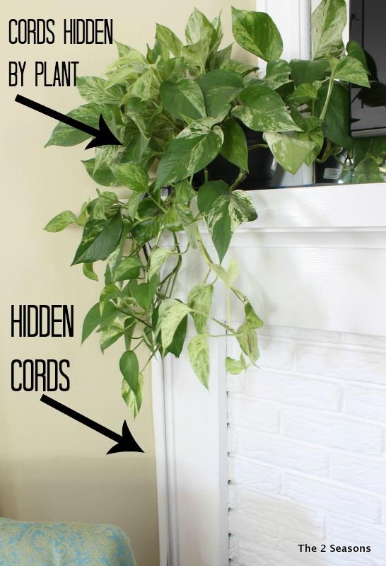 Cords Hidden