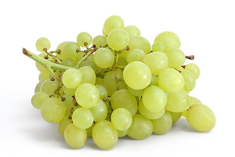 Grape - Grapes