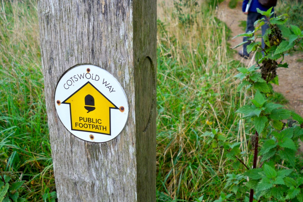 100 0763 1024x682 - The Cotswold Way