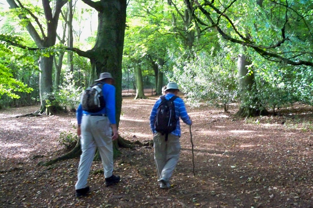 100 0775 1024x682 - The Cotswold Way