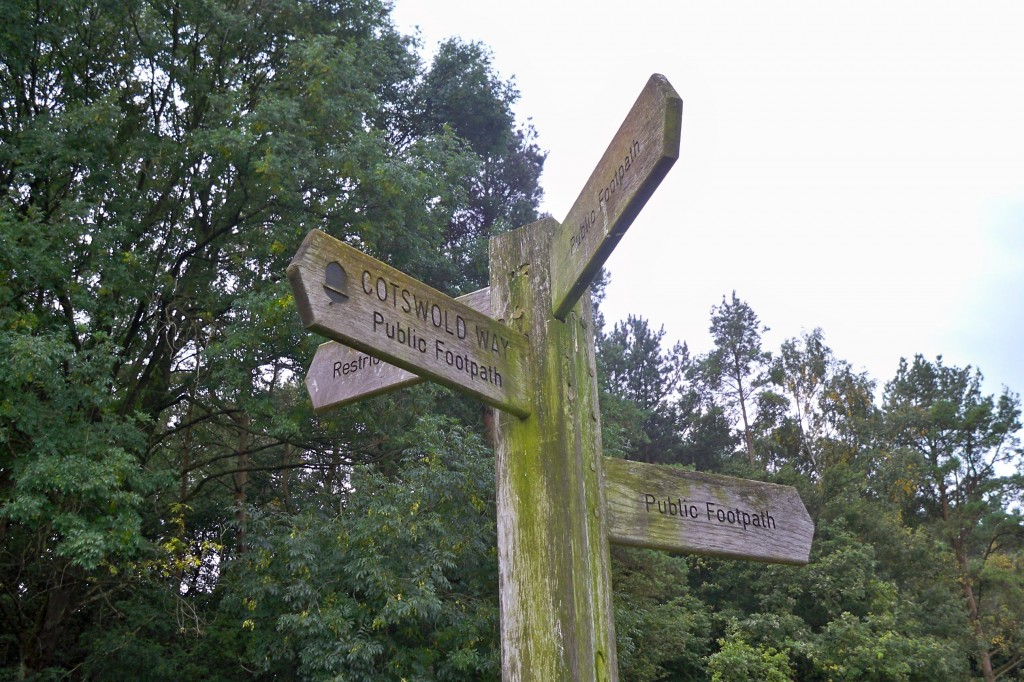 100 0780 1024x682 - The Cotswold Way