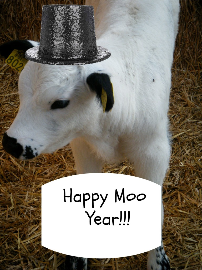 Happy Moo Year 2