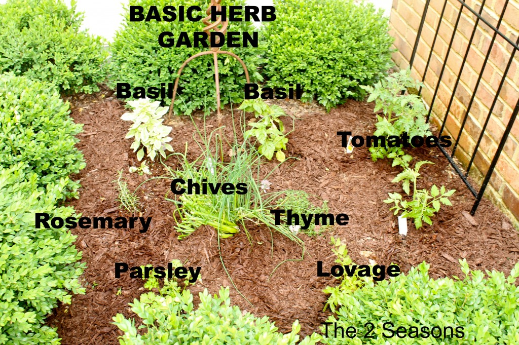 Herb garden 1024x681 - The Basic Herb Garden