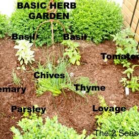 Herb garden 275x275 - The Basic Herb Garden