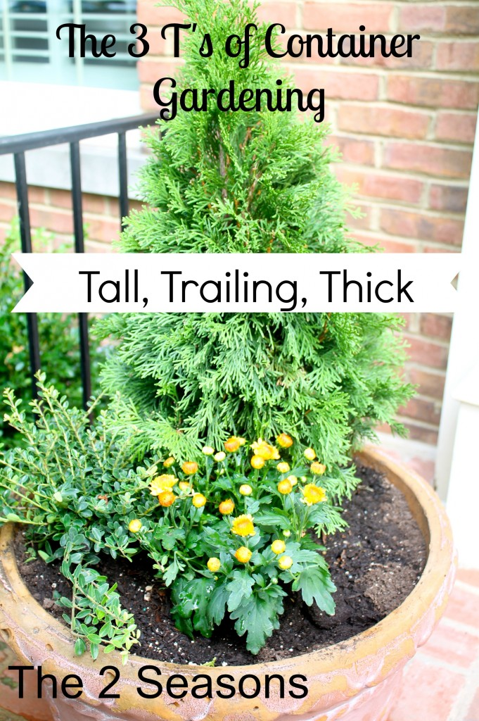 Container Gardening Rules 681x1024 - The Three Plants for Container Gardens