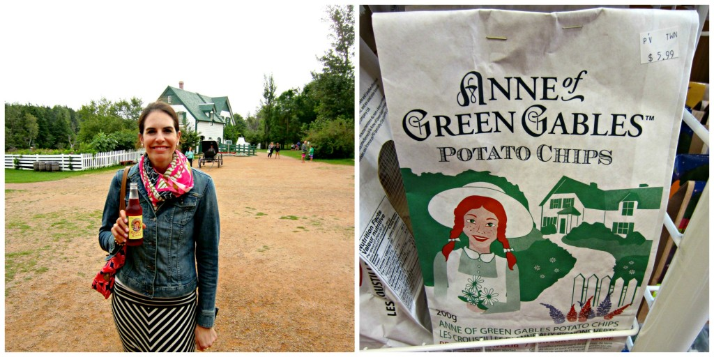 chips2 1024x512 - Anne of Green Gables