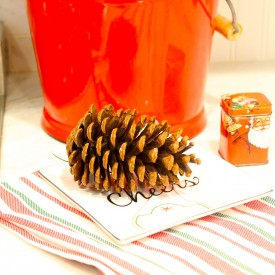 IMG 9488 275x275 - Five Reasons to Host a Holiday Open House