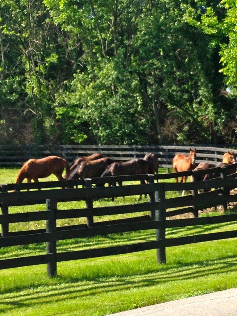 Horsey Hundred