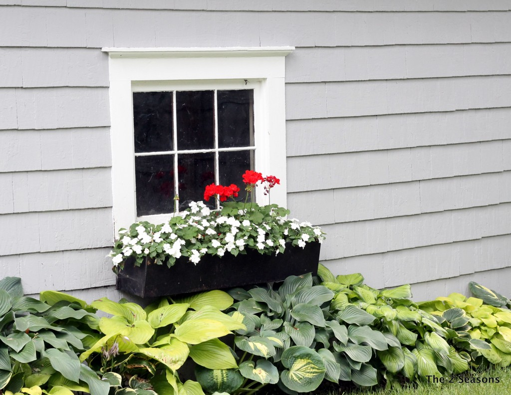 Window boxes- The 2 Seasons