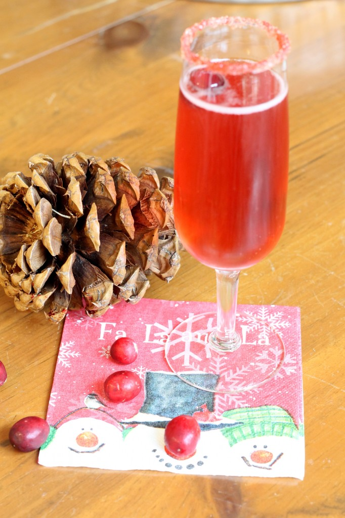 IMG 2152 682x1024 - Five Reasons to Host a Holiday Open House