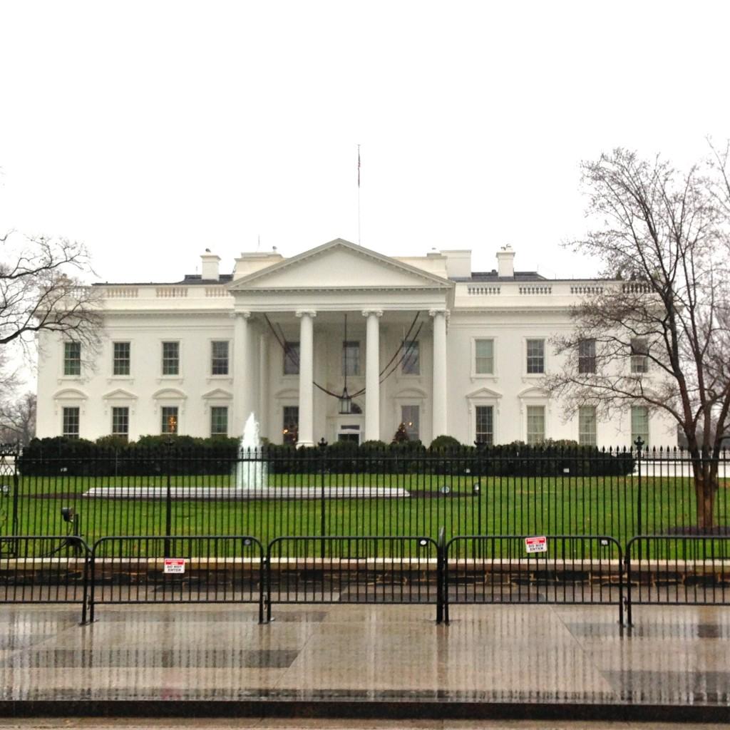 IMG 3055 1024x1024 - My Trip to Washington, DC