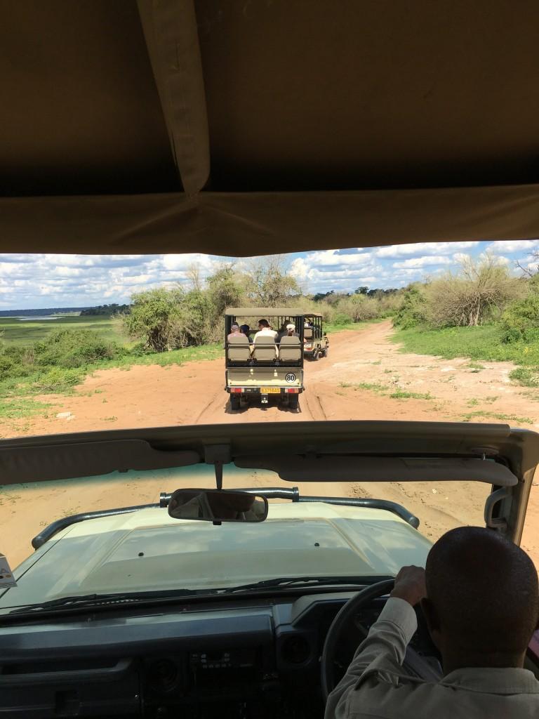 IMG 37451 e1458137486137 768x1024 - Our Trip to Botswana