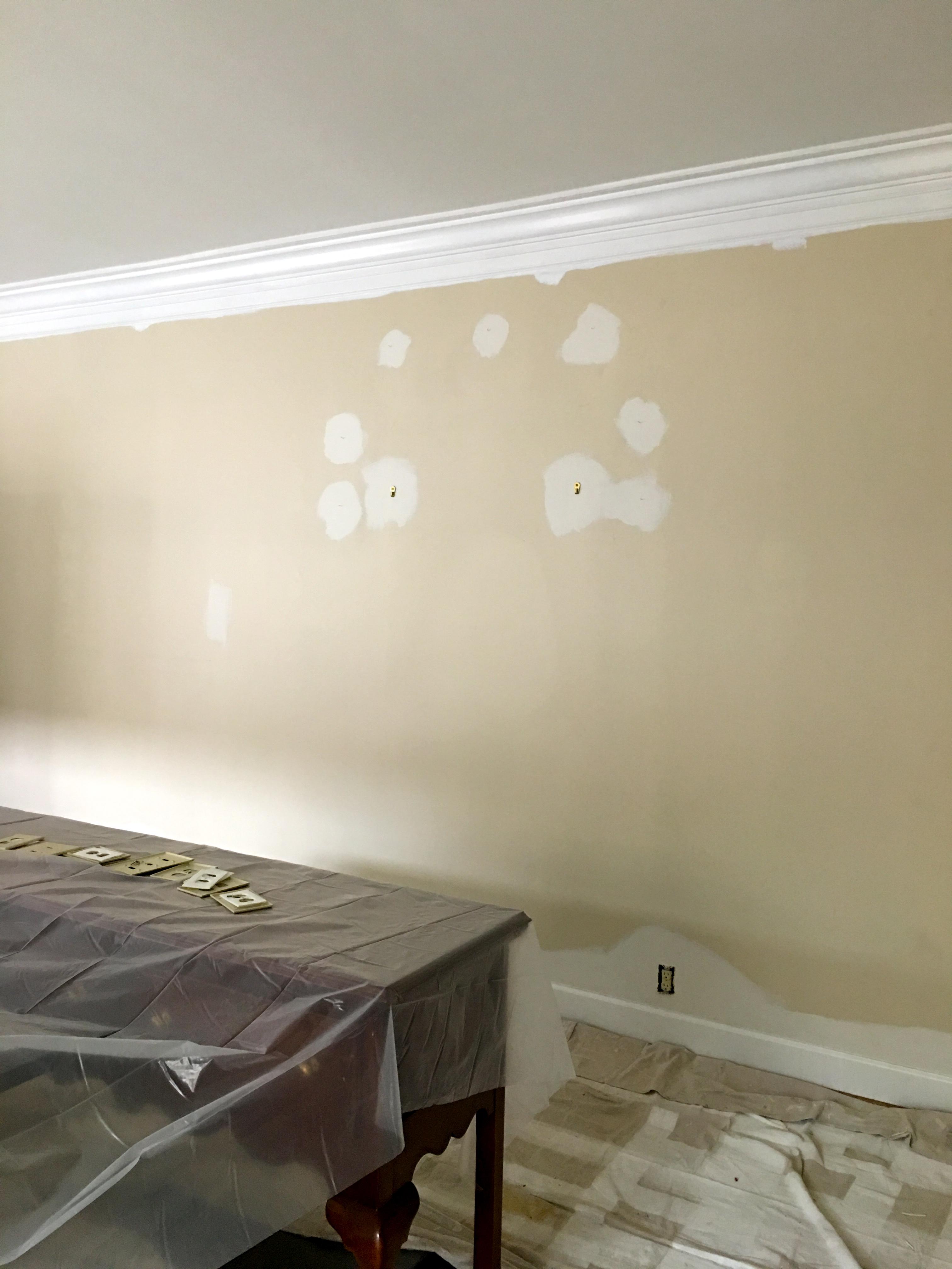 IMG 4213 - Fresh Paint