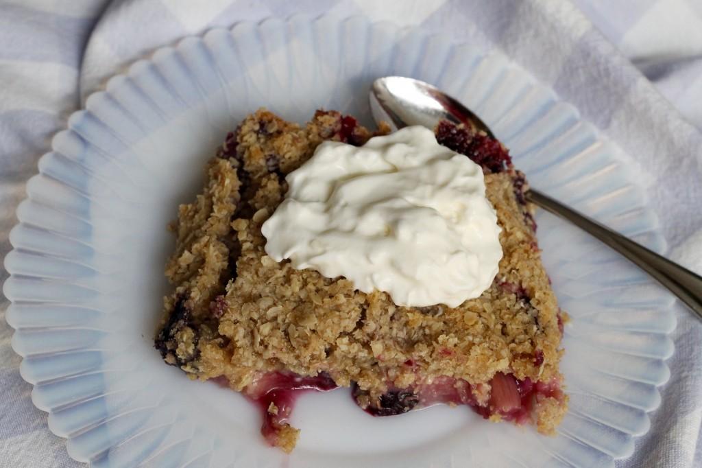 IMG 2688 1024x682 - Rhubarb and Berry Crisp