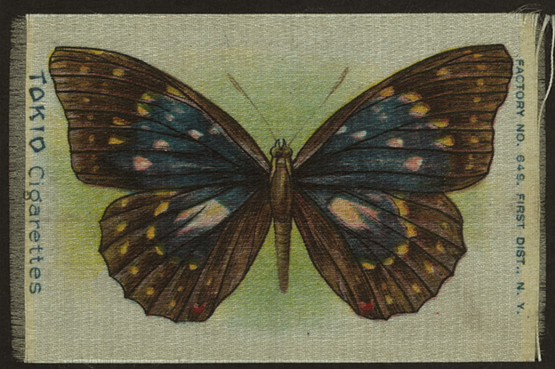 Screen shot from New York Public Library's digital collection