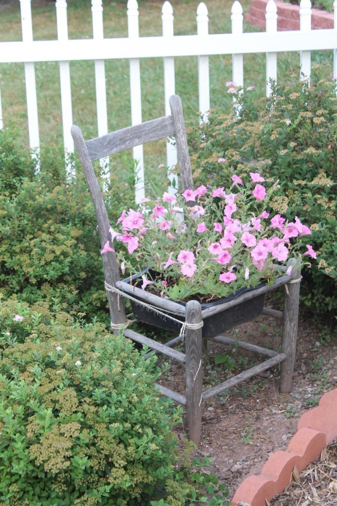 IMG 2934 e1470401167375 682x1024 - Grandma's Country Garden, 2016